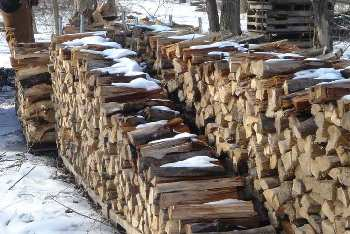 Firewood stacked for the winter.
