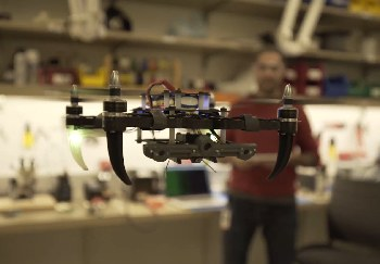 Hovering a drone inside takes practice.