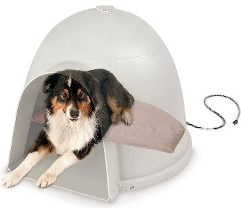 Dog sheltered by doghouse and kept warm with a heated pet bed.