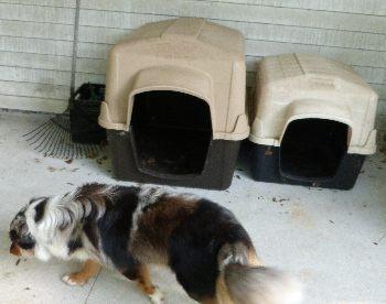 Petmate Dog Houses are sturdy.