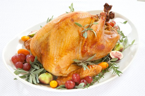 how to roast a turkey in an electric roaster oven