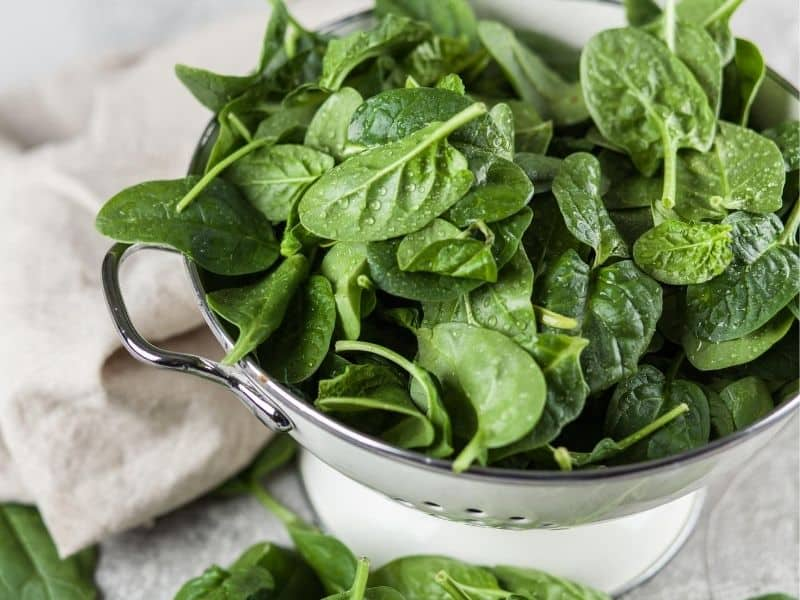 A bowl of baby spinach