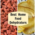 best home food dehydrator